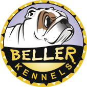 Beller Kennel - Bullmastiff